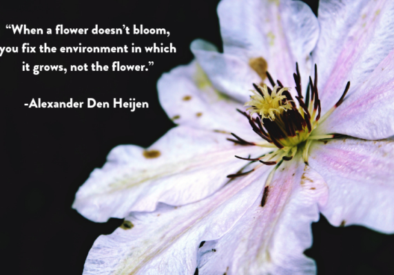 """When a flower doesn't bloom, you fix the environment in which it grows, not the flower."" Alexander Den Heijen."